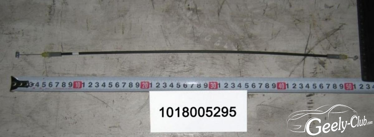 s101766-1018005295-1280x960 (1).jpg