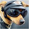 Страхование ОСАГО, КАСКО в Москве - последнее сообщение от Professional aviatrix
